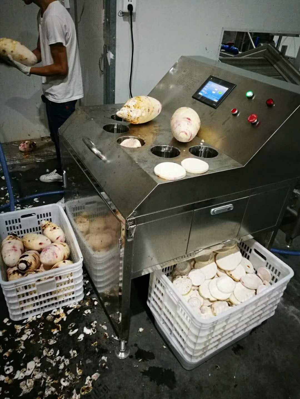 厂家供应智能型无损伤、无死角芋头刷洗机