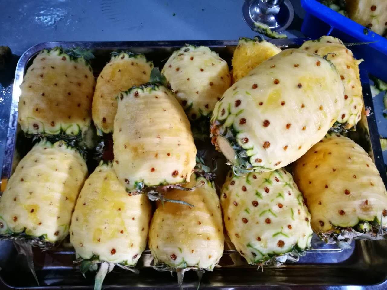 厂家供应菠萝切片机,菠萝片加工设备