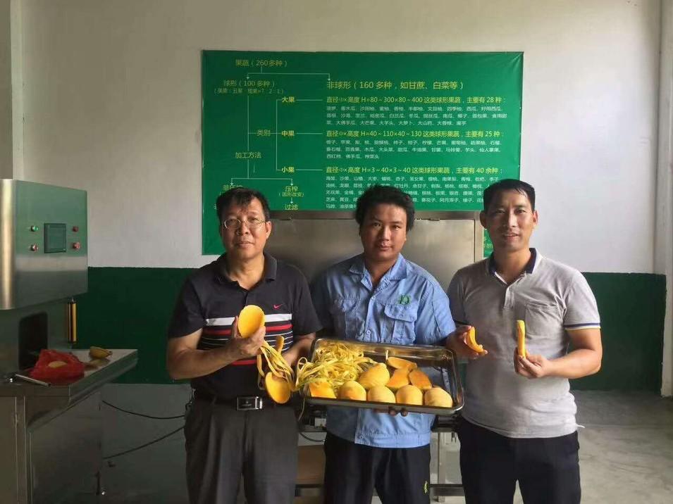 厂家供应芒果削皮-脱核机,芒果加工设备