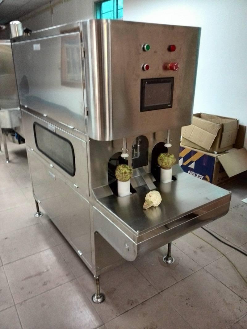 达桥大头菜削皮机 芥菜加工设备