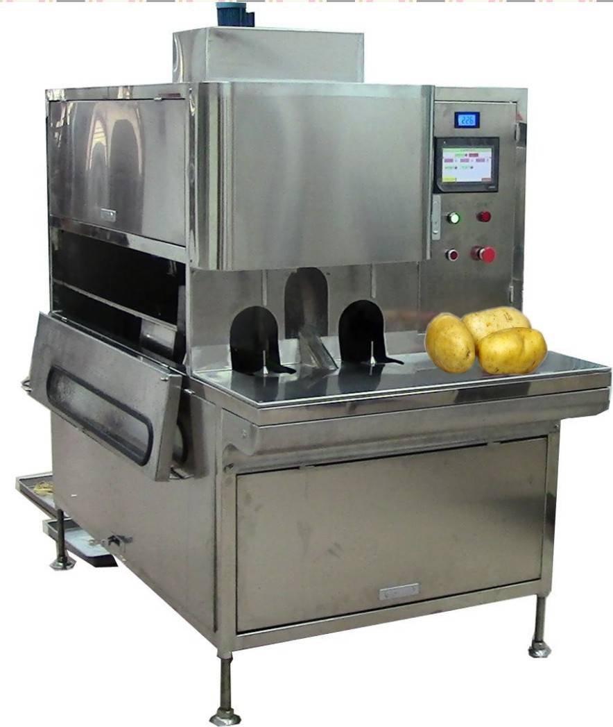 达桥供应马铃薯削皮机  土豆去皮机 土豆加工设备