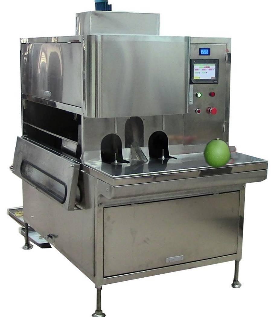 达桥供应蔬果柚削皮机 蔬果柚去皮机  蔬果柚加工设备