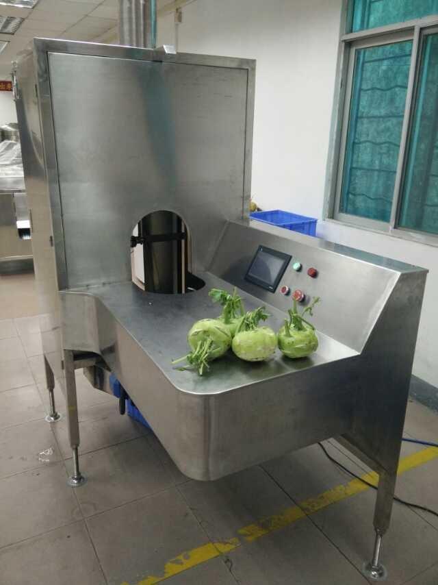 达桥供应苤蓝削皮机  芥菜去皮机  苤蓝加工设备
