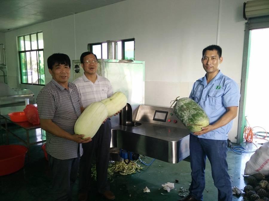 供应中央厨房专用冬瓜削皮机,可削南瓜、芋头等28种果蔬