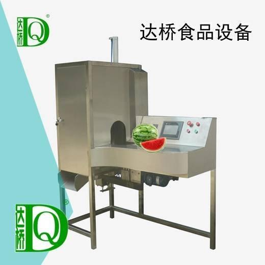 加工设备 大果削皮机系列 去皮机 大果削皮机价格,大果削皮机